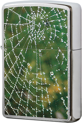 28285 Зажигалка Zippo Spider Web Rain Drops, Brushed Chrome